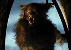 werewolfbird