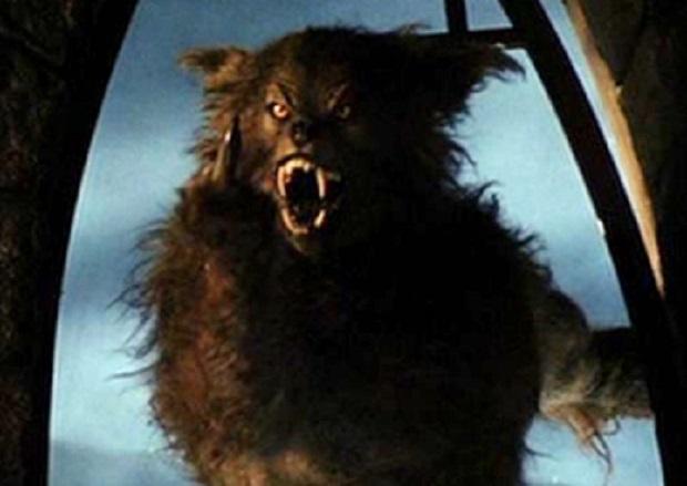 werewolf romance books 2015 pdf